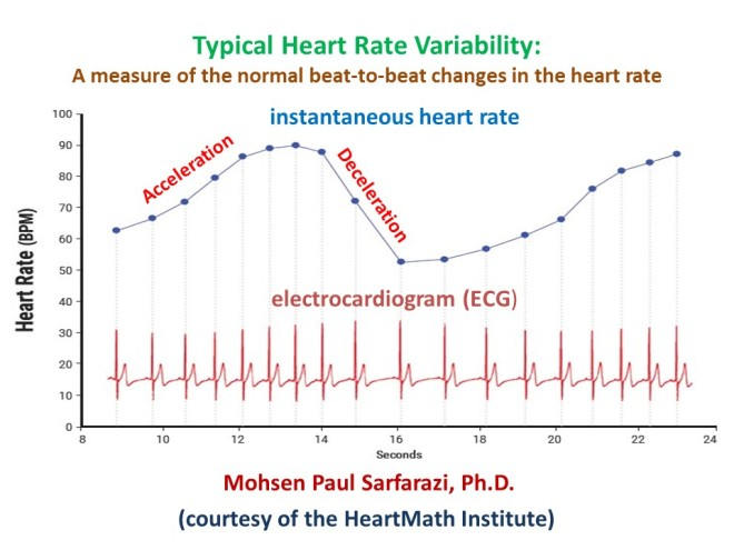 Heart Rate Acceleration-Deceleration